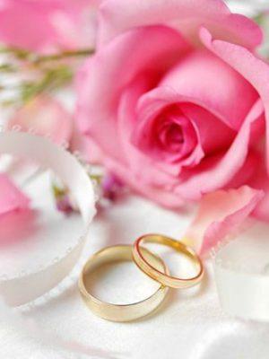 3_Ring-Pink-Shadw