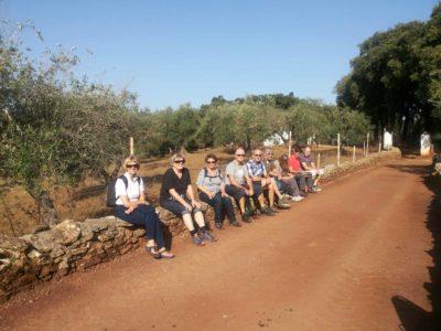 pig-farm-visit-walking