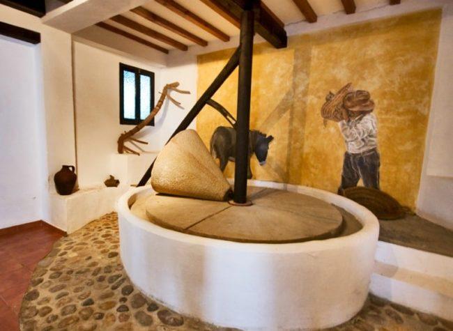 olive-oli-visit-seville-olive-mill