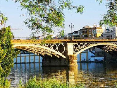 bridge with green treesand buildings