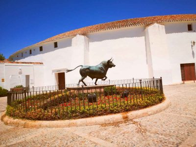 day-trip-ronda-from-seville-8
