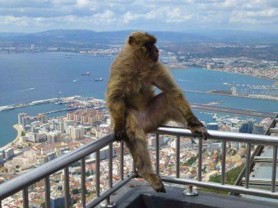 day-trip-gibraltar-from-seville-26